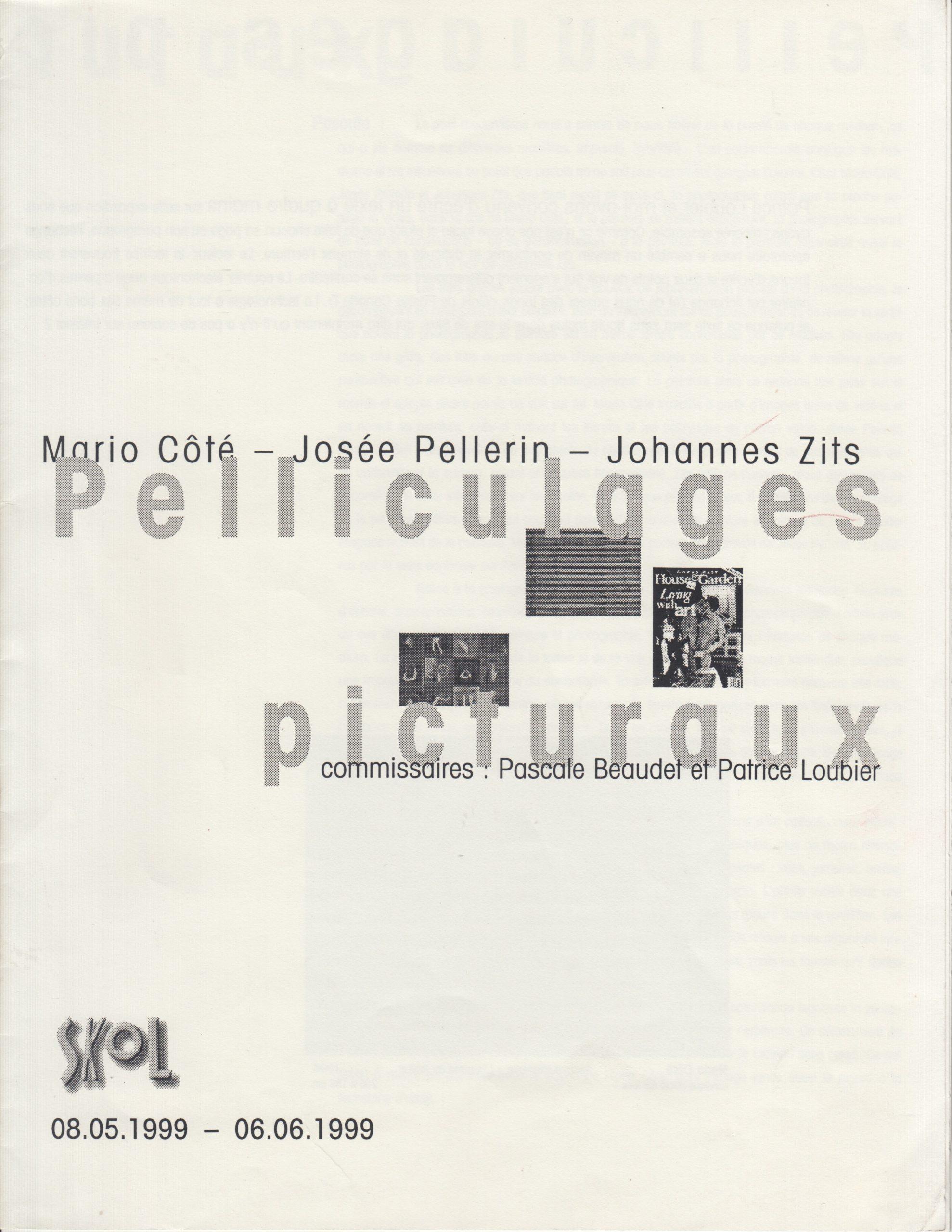 Pelliculages picturaux, Pascale Beaudet, Patrice Loubier, 1999
